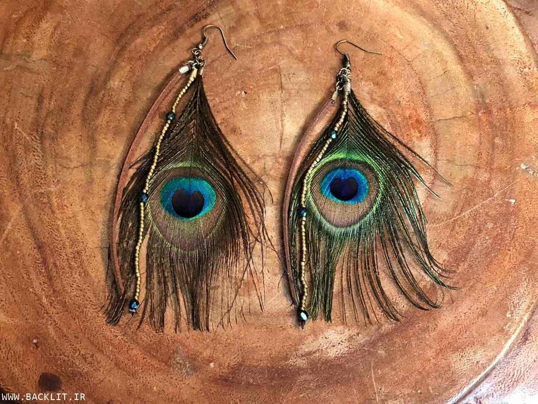 تابلو بکلایت پر طاووس