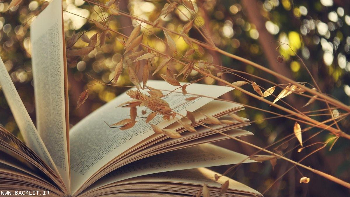 تابلو شیک کتابخانه